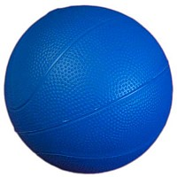 [해외]LEISIS Polyvalent Large Blue