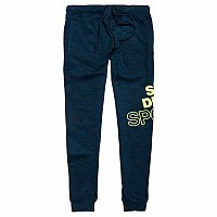 [해외]슈퍼드라이 Core Graphic Jogger Botanical Green