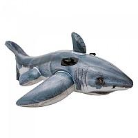 [해외]인텍스 Photorealistic Inflatable Shark + 2 Handles