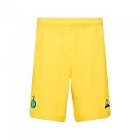 [해외]르꼬끄 AS 세인트 Etienne Goalkeeper 18/19 Original Yellow